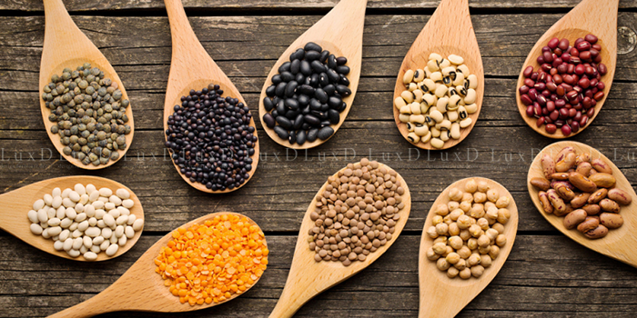 Các loại hạt cung cấp các chất dinh dưỡng và loại bỏ các độc tố gây ung thư