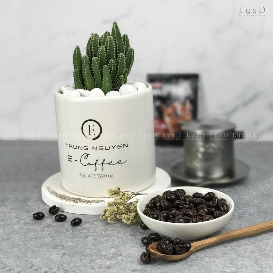 Chậu cây in logo thương hiệu Trung Nguyên Coffee